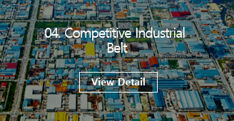 04 Competitive Industrial Belt [View Detail]
